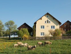 Farmyard in Friedersdorf