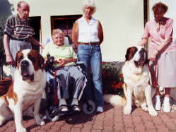 Therapy dogs in the old people's home